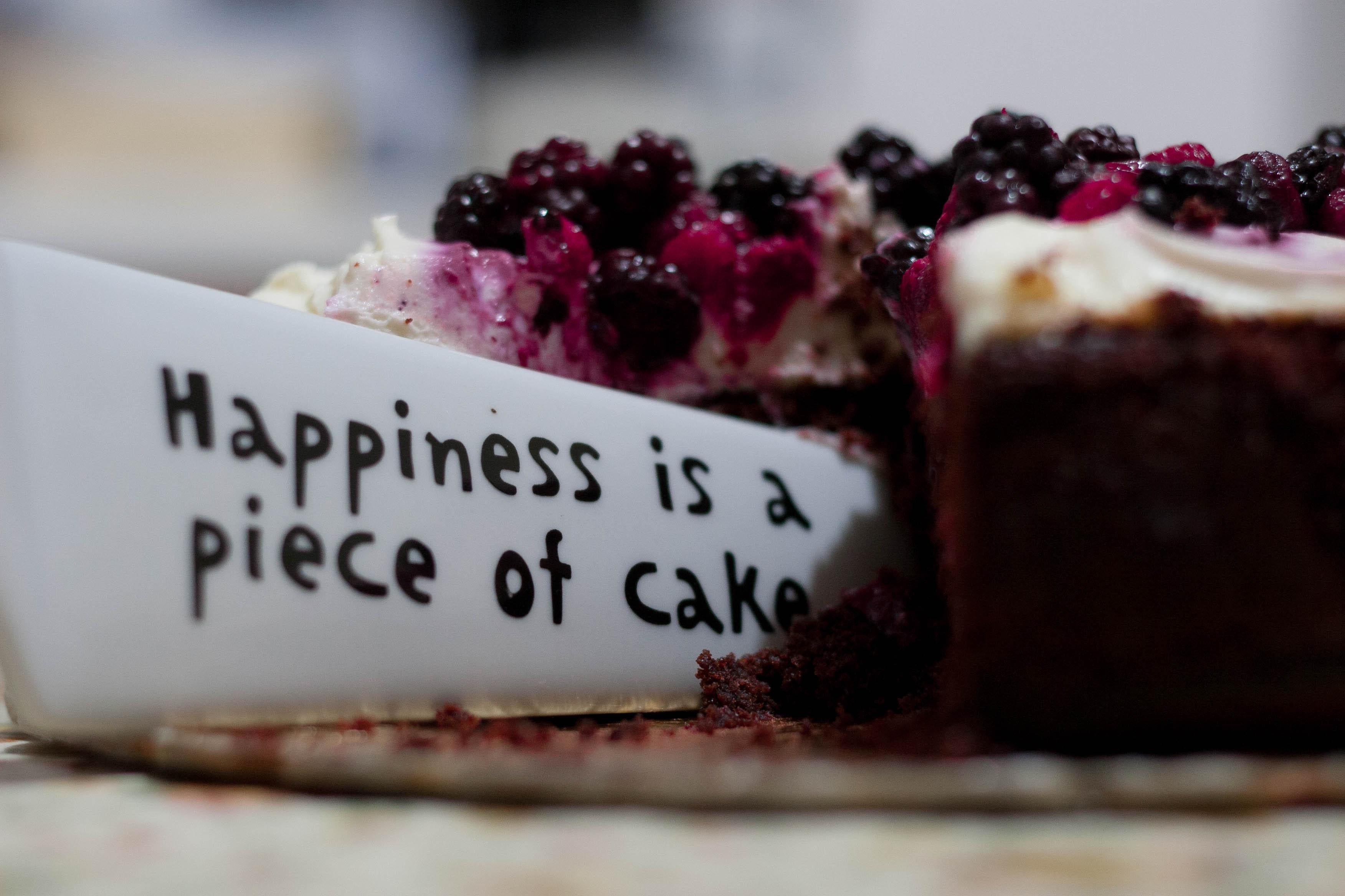 baking-blueberries-blur-227432